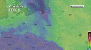 Porywy wiatru w najbliższych dniach