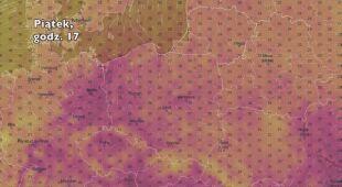 Temperatura w ciągu najbliższych pięciu dniu (Ventusky.com) | wideo bez dźwięku